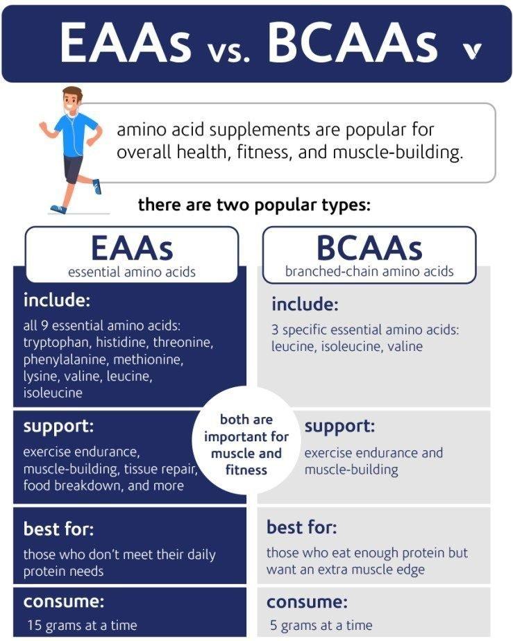 EEA vs BCAA aminozuren infographic