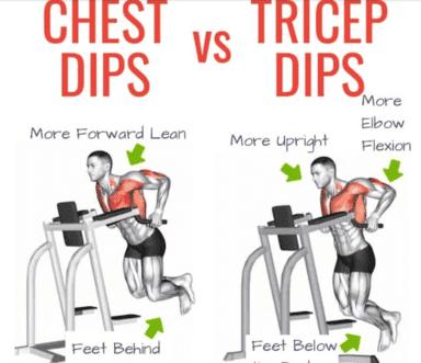 Chest dips vs. Tricep dips