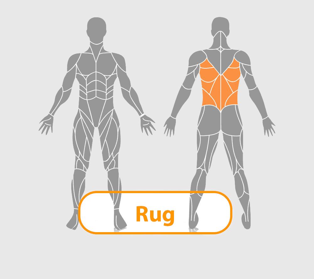 lichaam met rugspieren uitgelicht